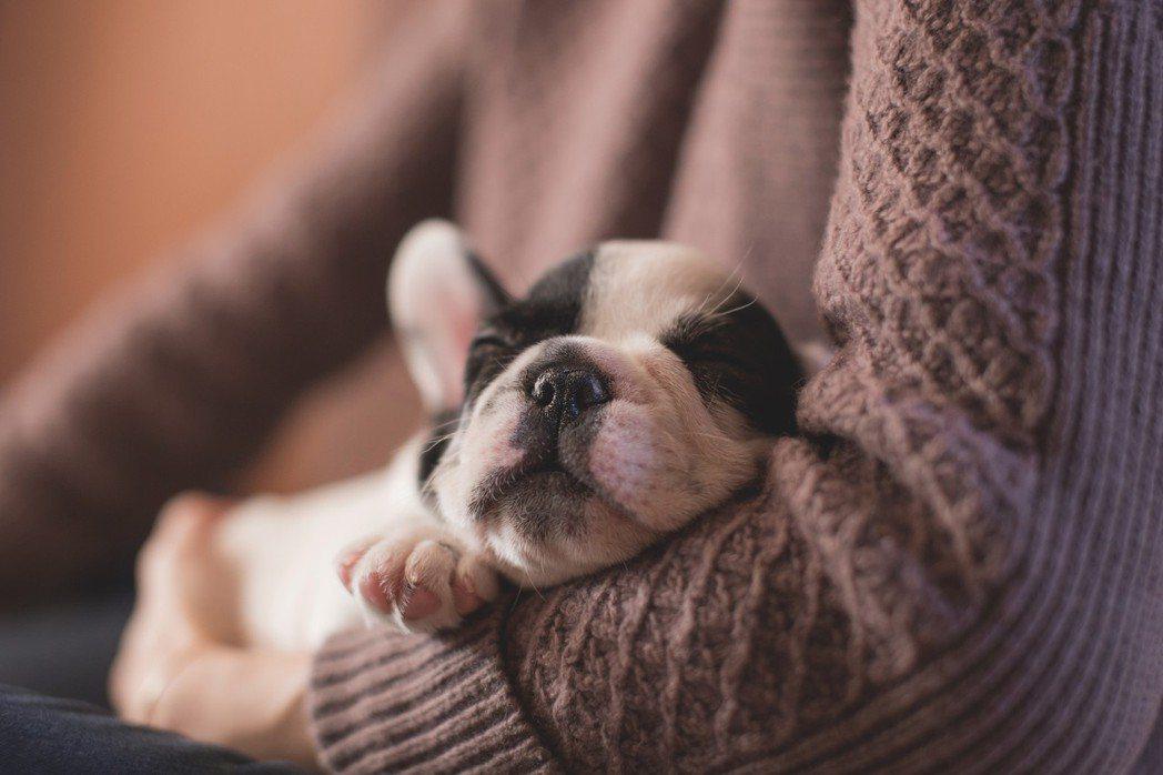 睡覺品質超重要。圖/摘自pelexs