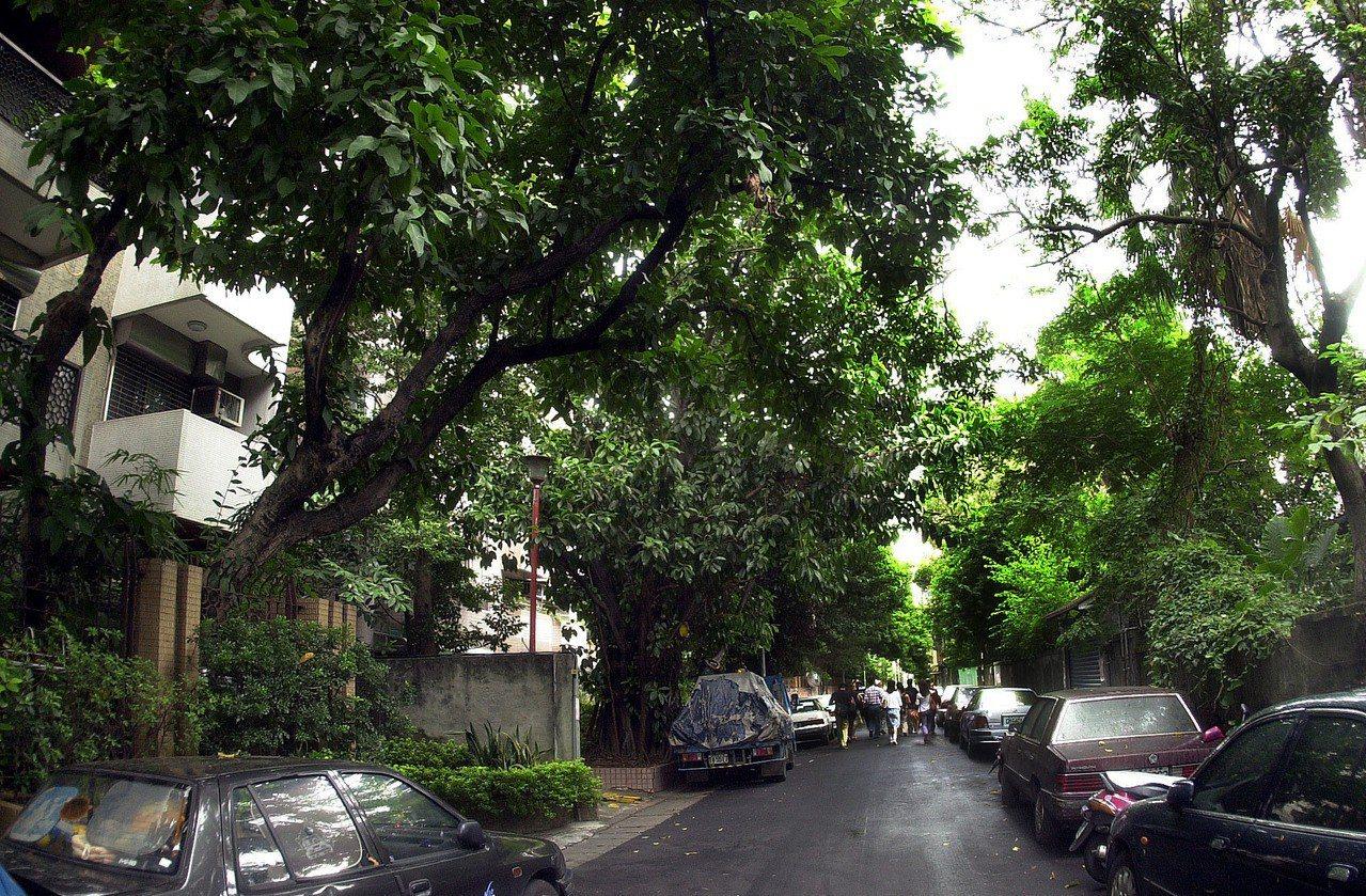圖為台北市青田街一帶,屬於台灣大學教職員宿舍區。報系資料照/記者林建榮攝影