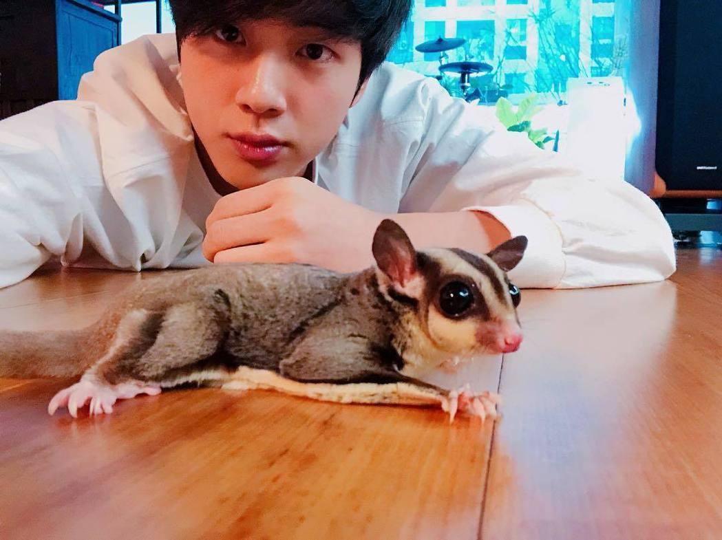 Jin曾在IG曬出與愛寵的合照。圖/擷自IG