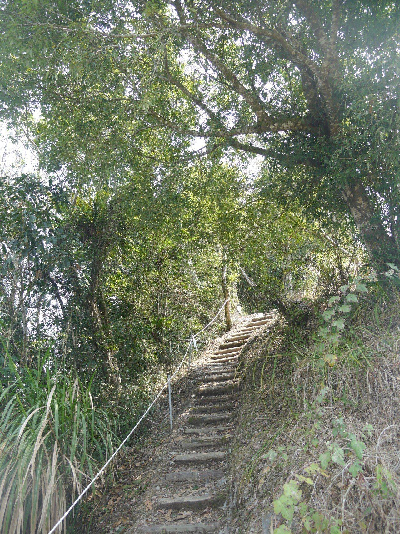 遊客必須步行入山,繞過路基坍塌處的林下步道較有難度,距離約1公里左右。記者徐白櫻...