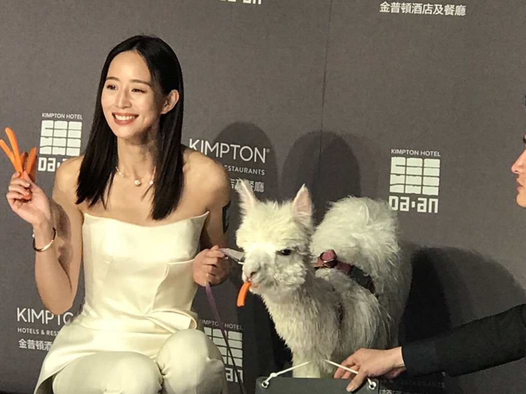 張鈞甯21日為「寵物友善」金普頓大安酒店擔任揭幕大使。記者黃保慧/攝影