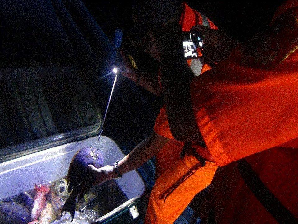 屏東恆春半島最近發生多件漁民持魚叉潛水打魚遭取締案,依漁業法重罰至少3萬元,引爆...