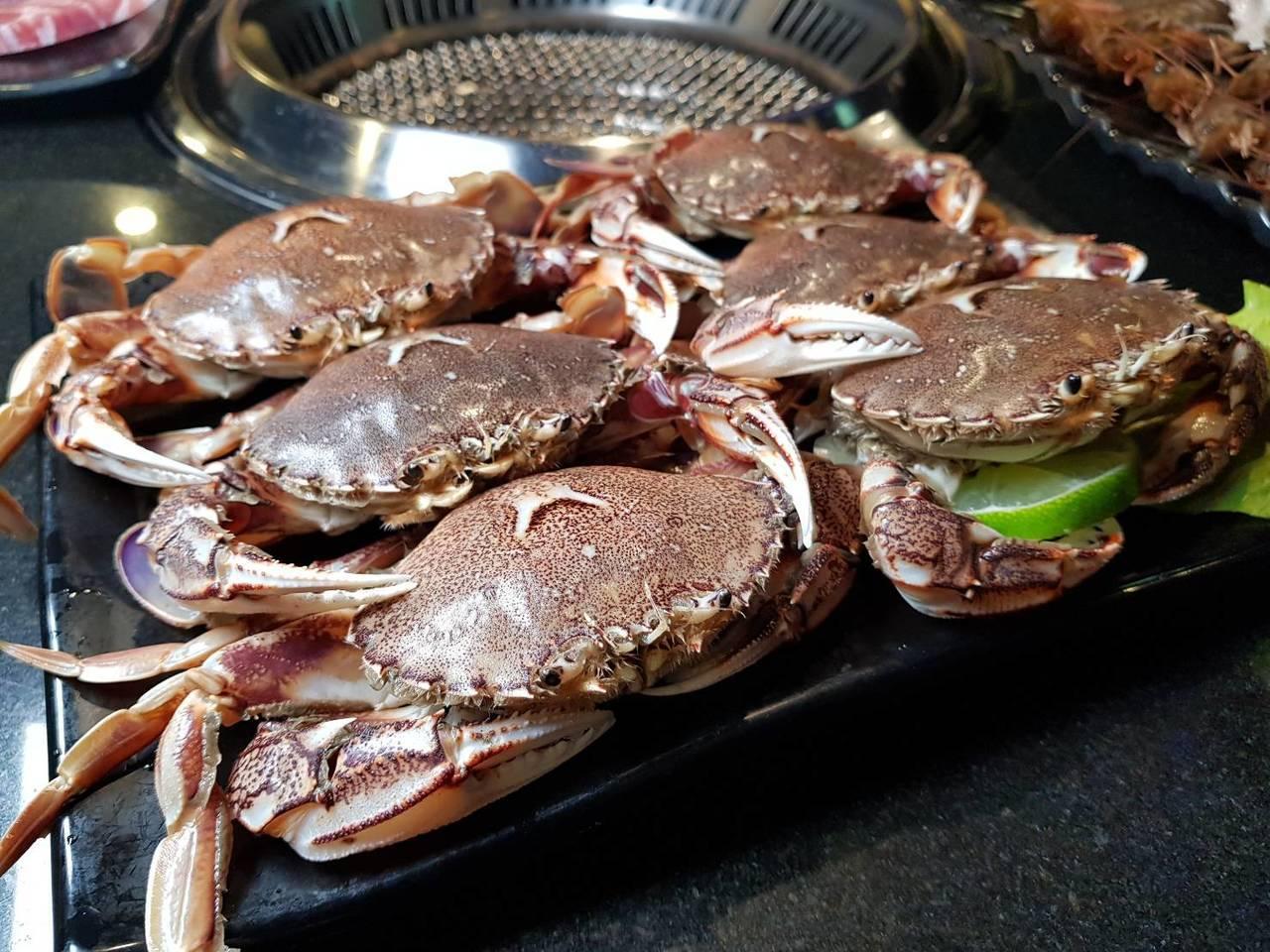 自3月21日起,凡參加天外天臉書活動,每人可獲贈2隻黃金蟹。記者陳睿中/攝影