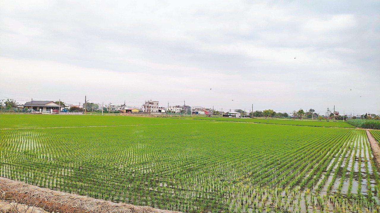 國土計畫法將上路,雲林一半以上土地將被畫為農地,引發不分黨派議員憂心限縮產業發展...
