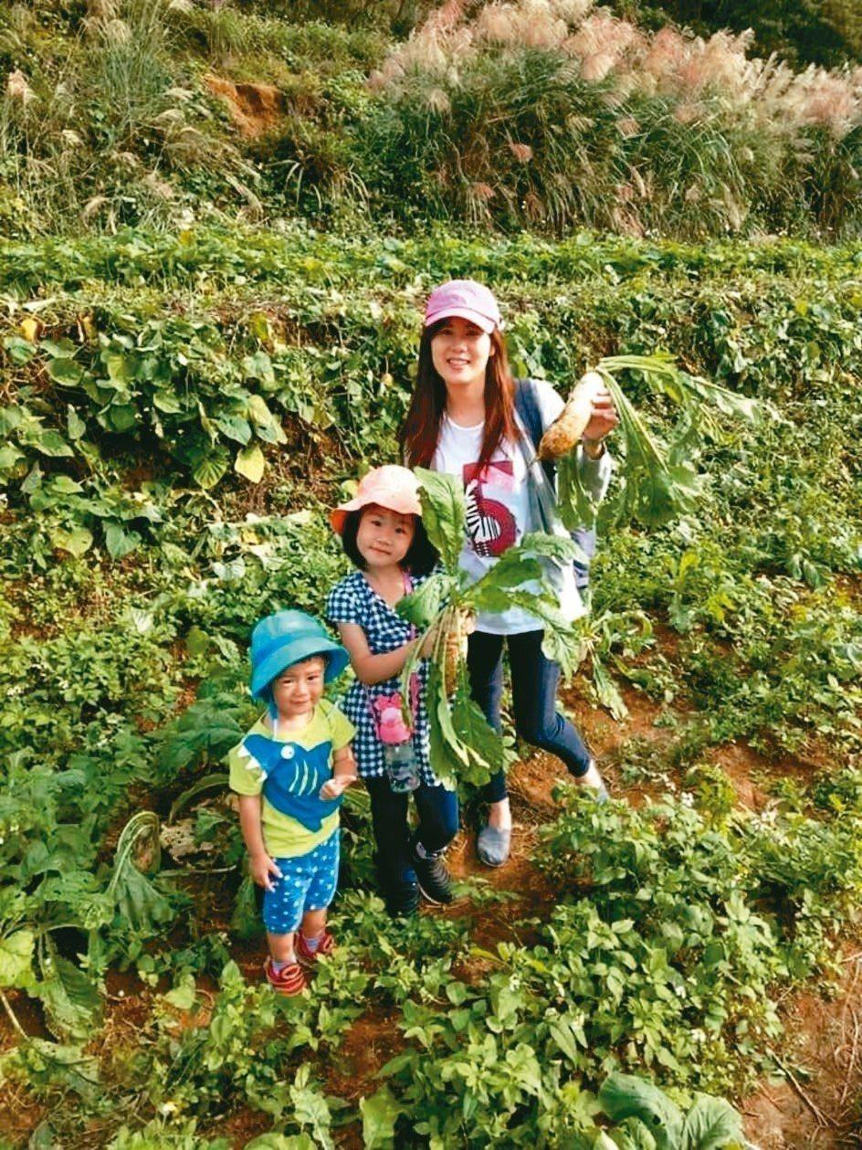 來蕃婆林休閒農場可體驗拔蘿蔔等各項農業活動。 圖/蕃婆林農場提供