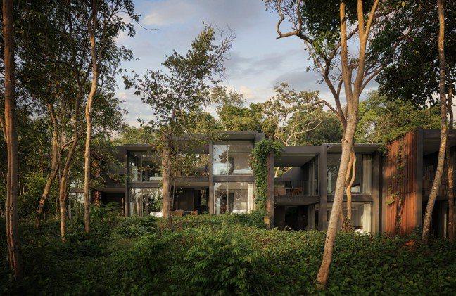柬埔寨瓜隆群島擁有茂密的原始景觀。(阿麗拉提供) 陳昭妤
