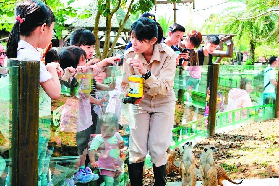 六福村搶攻4月兒童節連假商機,「動物派對」即將在4月3日、兒童節連假前夕開鑼起跑...