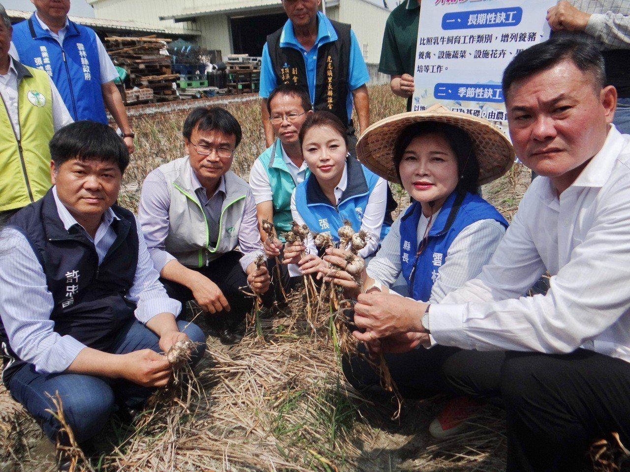 農委會主委陳吉仲(左二)今午到雲林了解蒜頭受災情況。記者蔡維斌/攝影