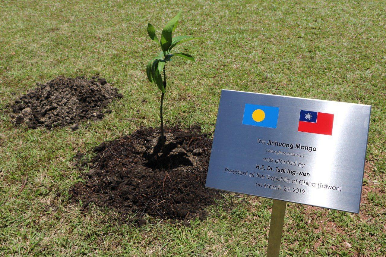 兩國元首植樹。記者周佑政/攝影