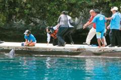 台美升溫…蔡總統出訪帛琉 美大使出席晚宴