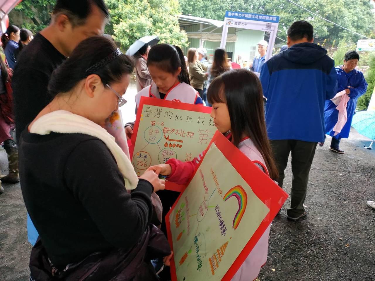台中市太平區農會為推廣枇杷產業,上午在太平山區的東汴國小舉辦登山健行和園遊會等活...