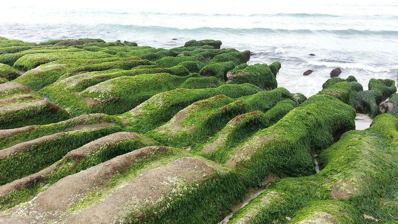 ▲春遊景點推薦-老梅綠石槽。(圖/Pixabay)
