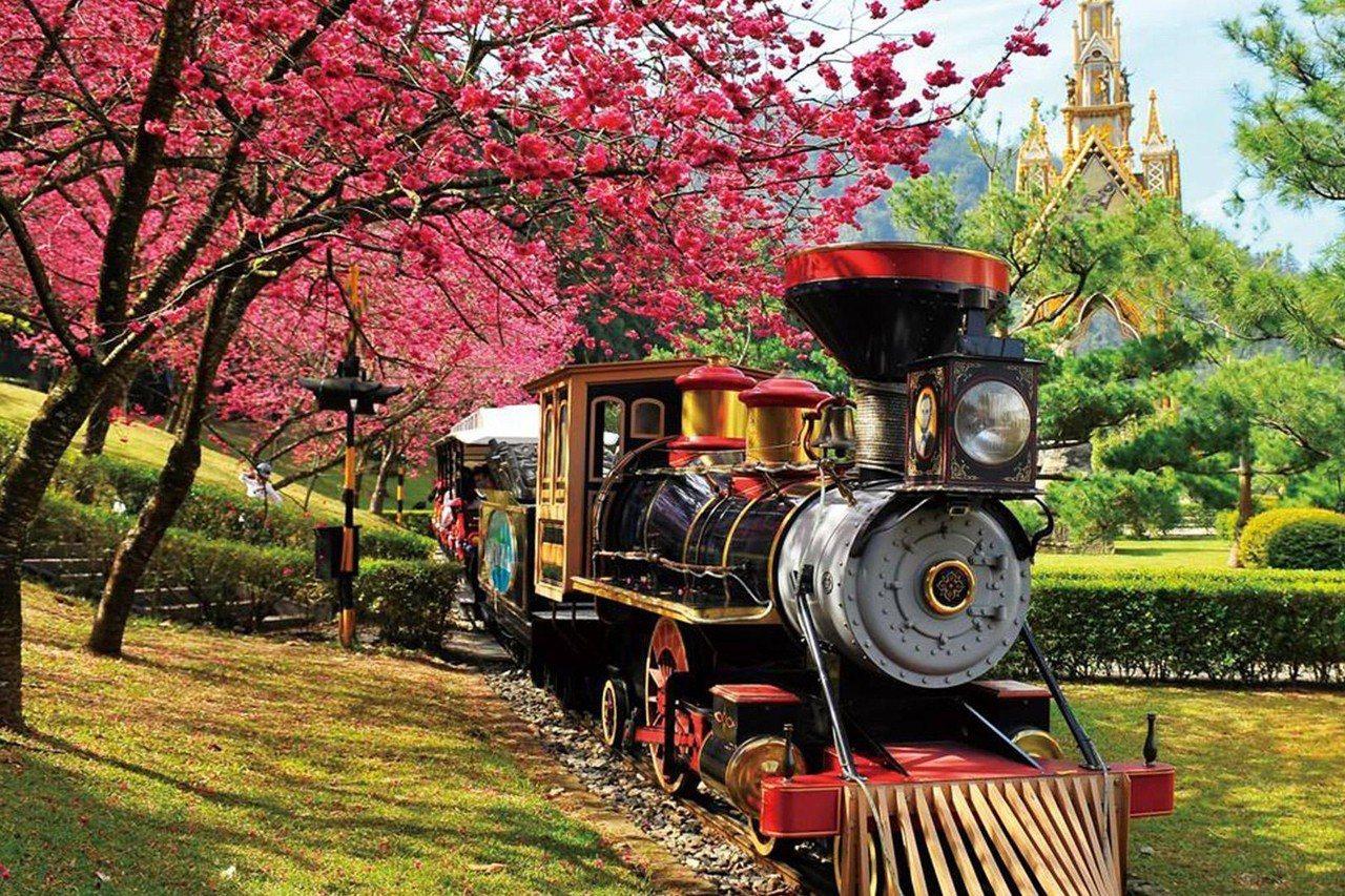 九族文化村櫻花季是台灣賞櫻的最佳首選。圖/kkday提供