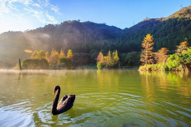 高海拔湖泊「明池」的山光水色。 力麗觀光/提供
