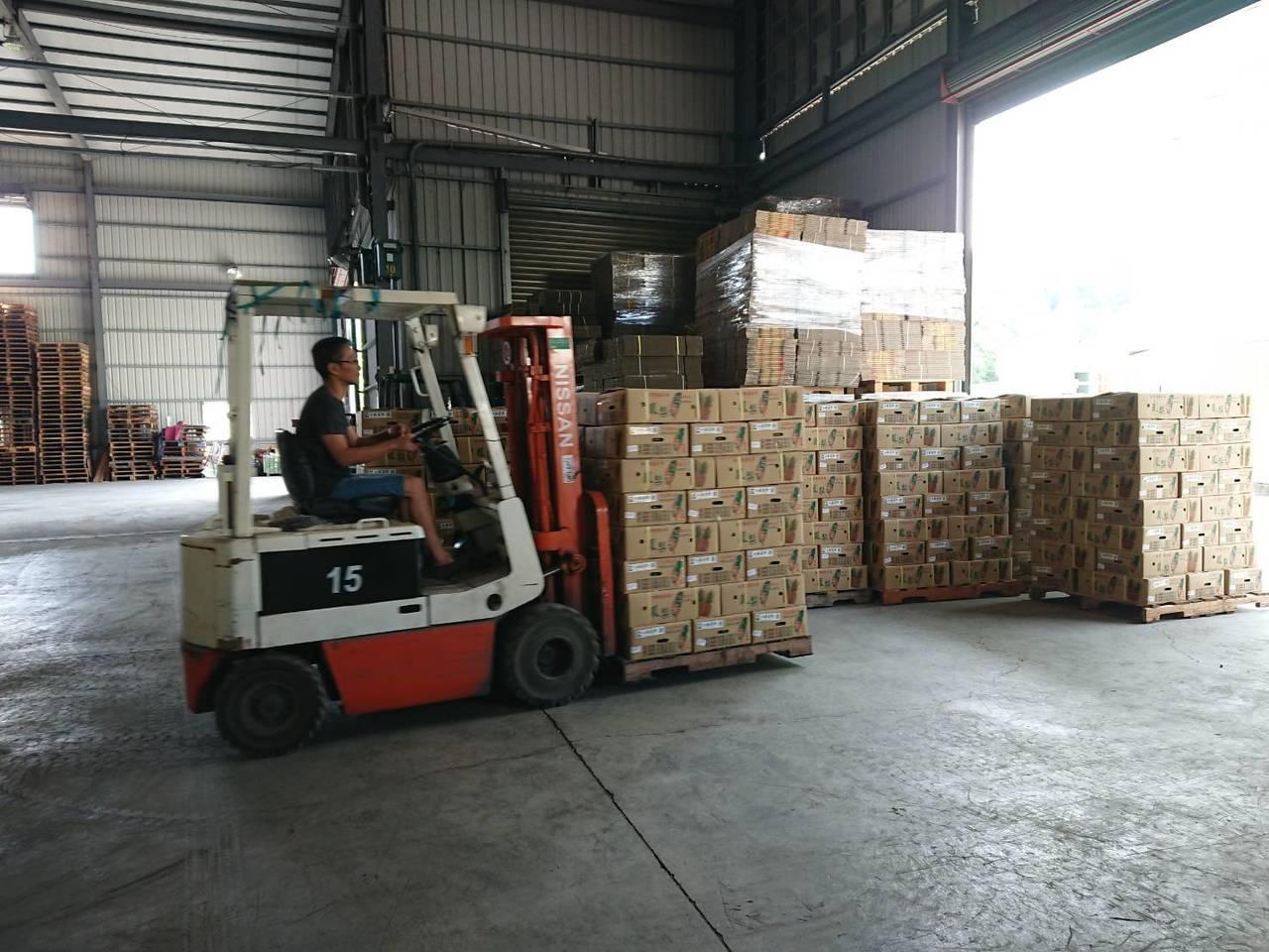 鴻海集團永齡選物平台採購高雄農產品,今天上午在燕巢集貨場裝櫃,共有6720箱,全...