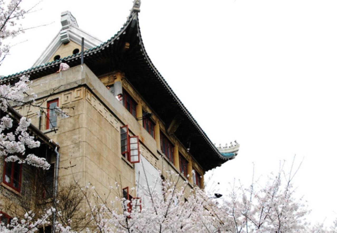武漢大學的櫻花其實是對日抗戰時期,日本軍隊占領武大時所種值,被當地人視為「國恥之...