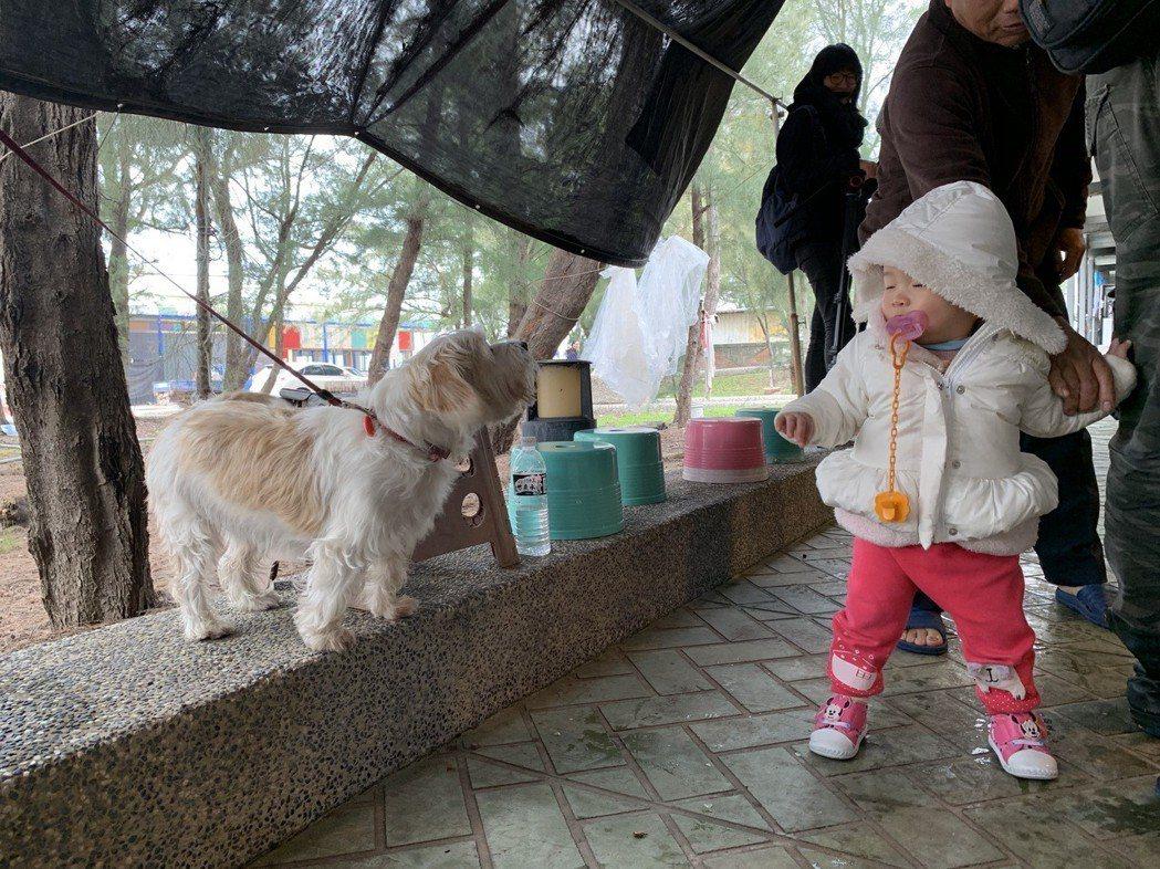 涂月華在龍鳳漁港買魚時,旁邊的小娃也想湊過來。 記者黃昭勇/攝影