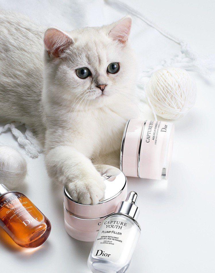 迪奧凍妍新肌抗氧霜,能調理肌膚。 圖/Dior 提供