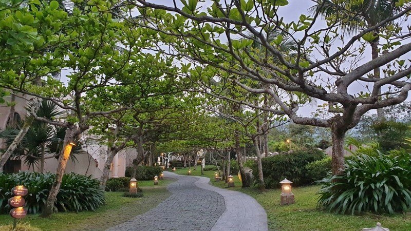 在理想大地漫步,盡是濃濃的綠意,旅客很容易感到輕鬆自在。 徐谷楨/攝影