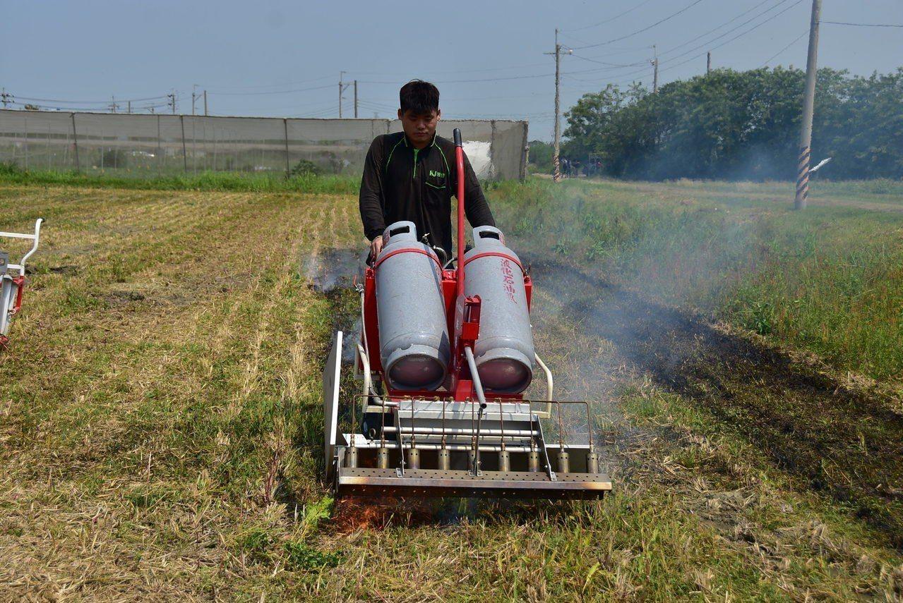 明道青農助耕團學生今天在農場實際操作火焰滅菌車,示範農地滅菌、滅草及滅蟲作業。照...