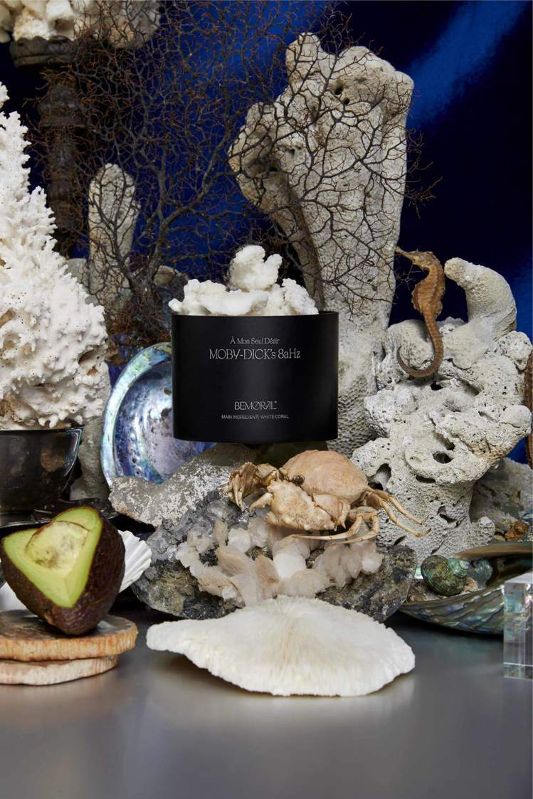 莫比·堊鯨的8aHz MOBY-DICK's 8aHz_白珊瑚 15ml/ 售價...