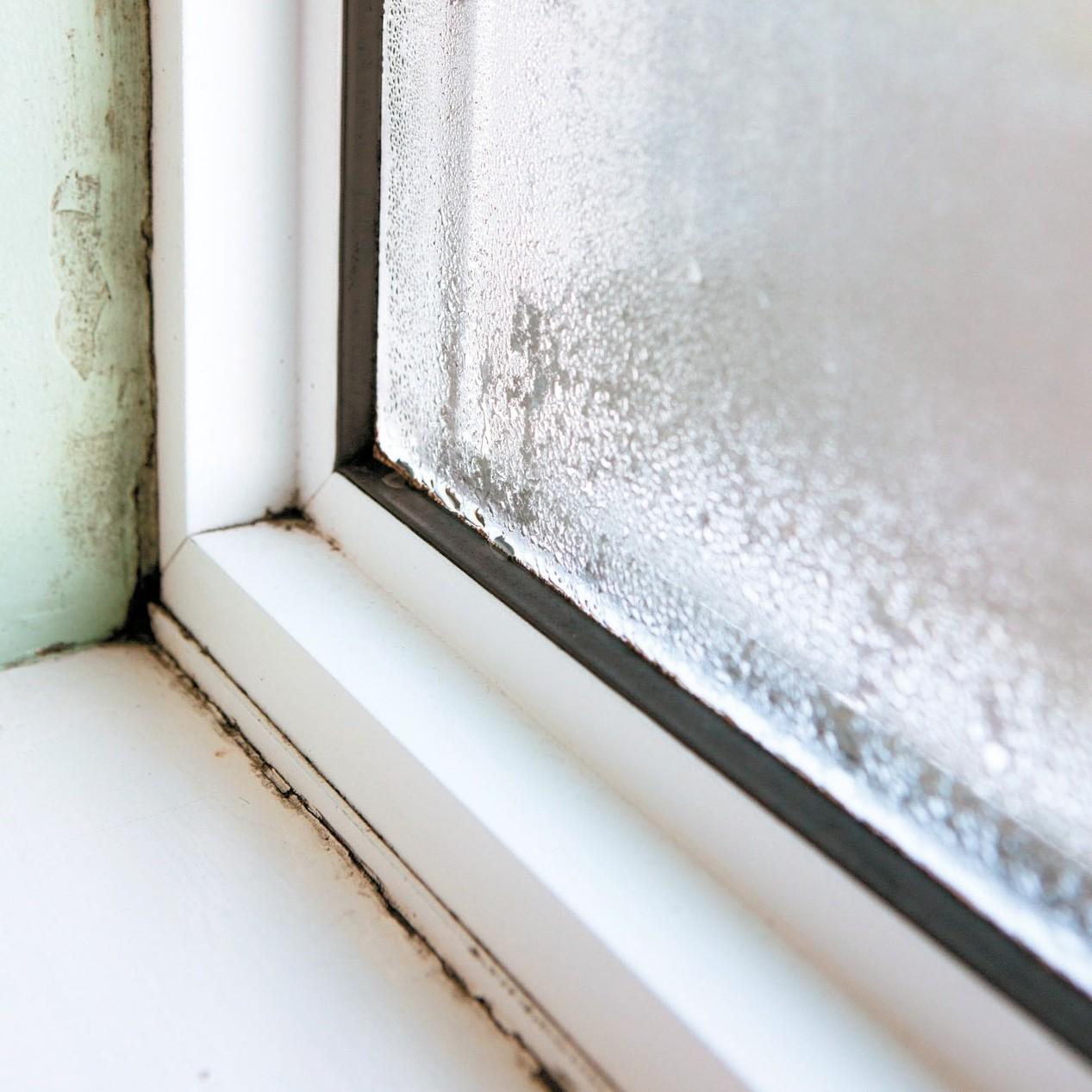 窗框漏水可能是接縫老化,建議更換新窗戶。 圖/信義房屋提供