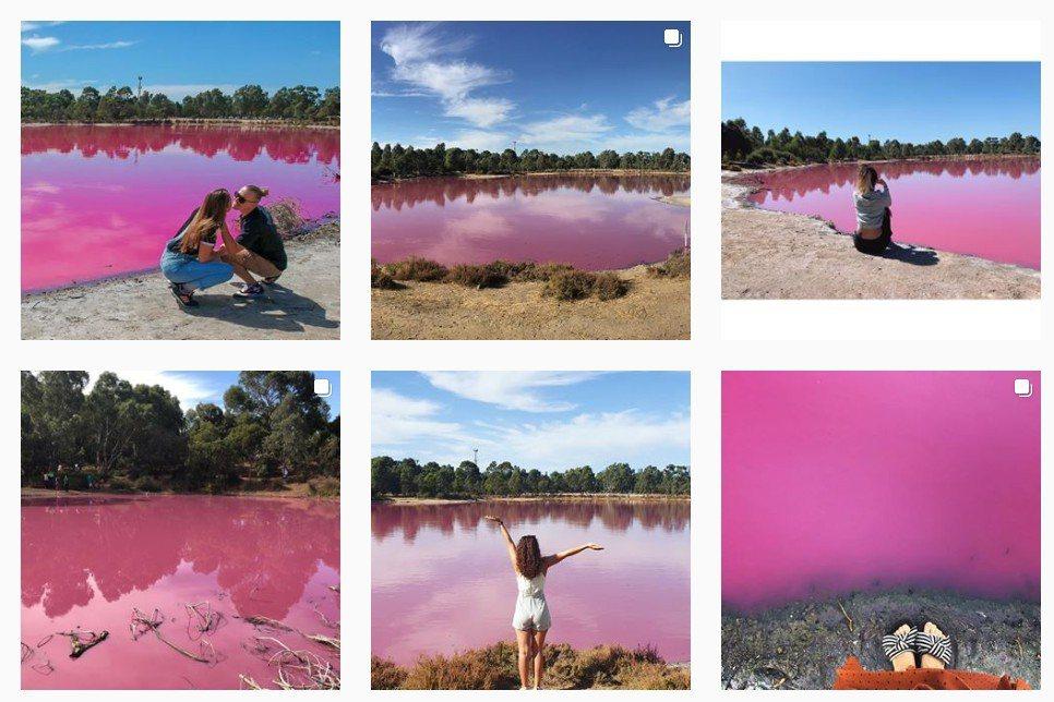 墨爾本市西門公園(Westgate Park)湖泊的湖水在最近數周變成粉紅色,也...