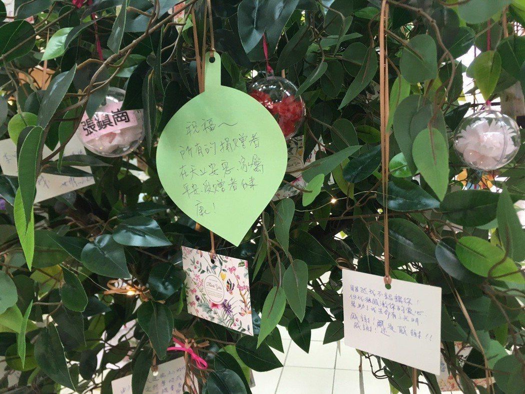 希望樹。 臺中榮總/提供。