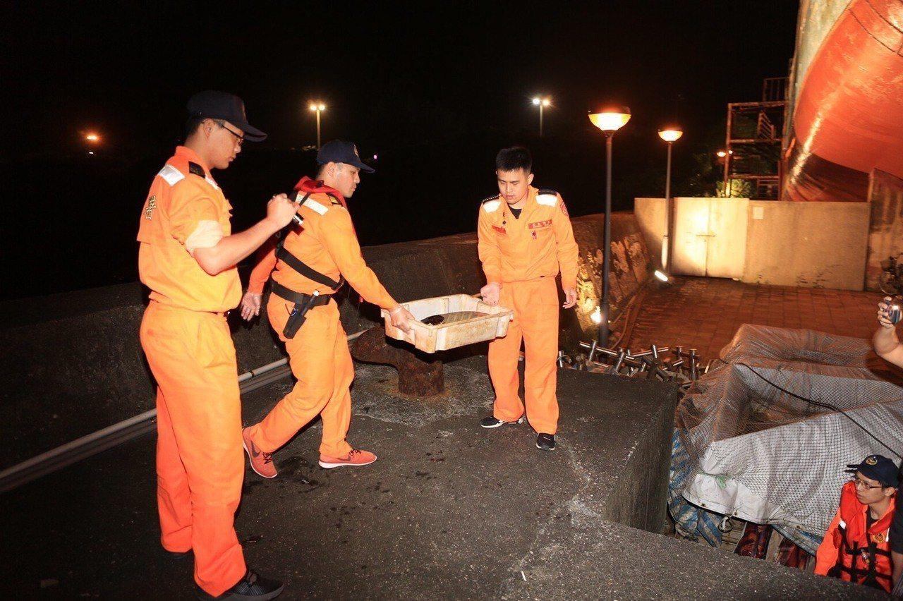海巡署第二岸巡隊碧砂安檢所昨晚在基隆碧砂漁港,發現有一隻綠蠵龜緩緩飄進港區,海巡...