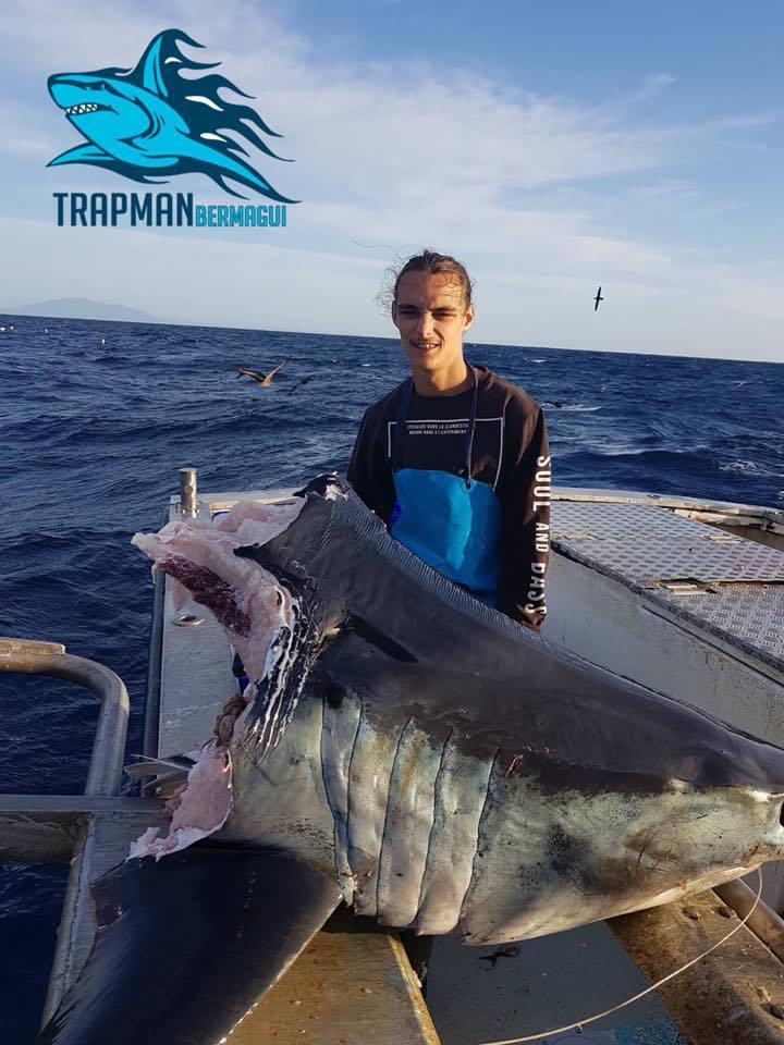 被咬掉一半的巨型鯖鯊。 圖片擷自Trapman Bermagui臉書