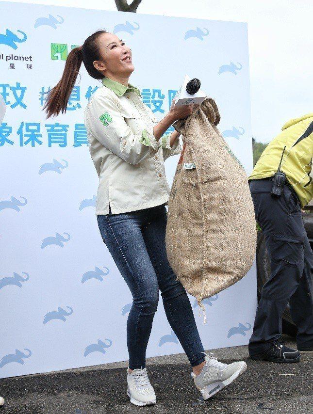 李玟化身一日大象保育員,扛起給大象玩的沉重布袋。記者鄭清元/攝影