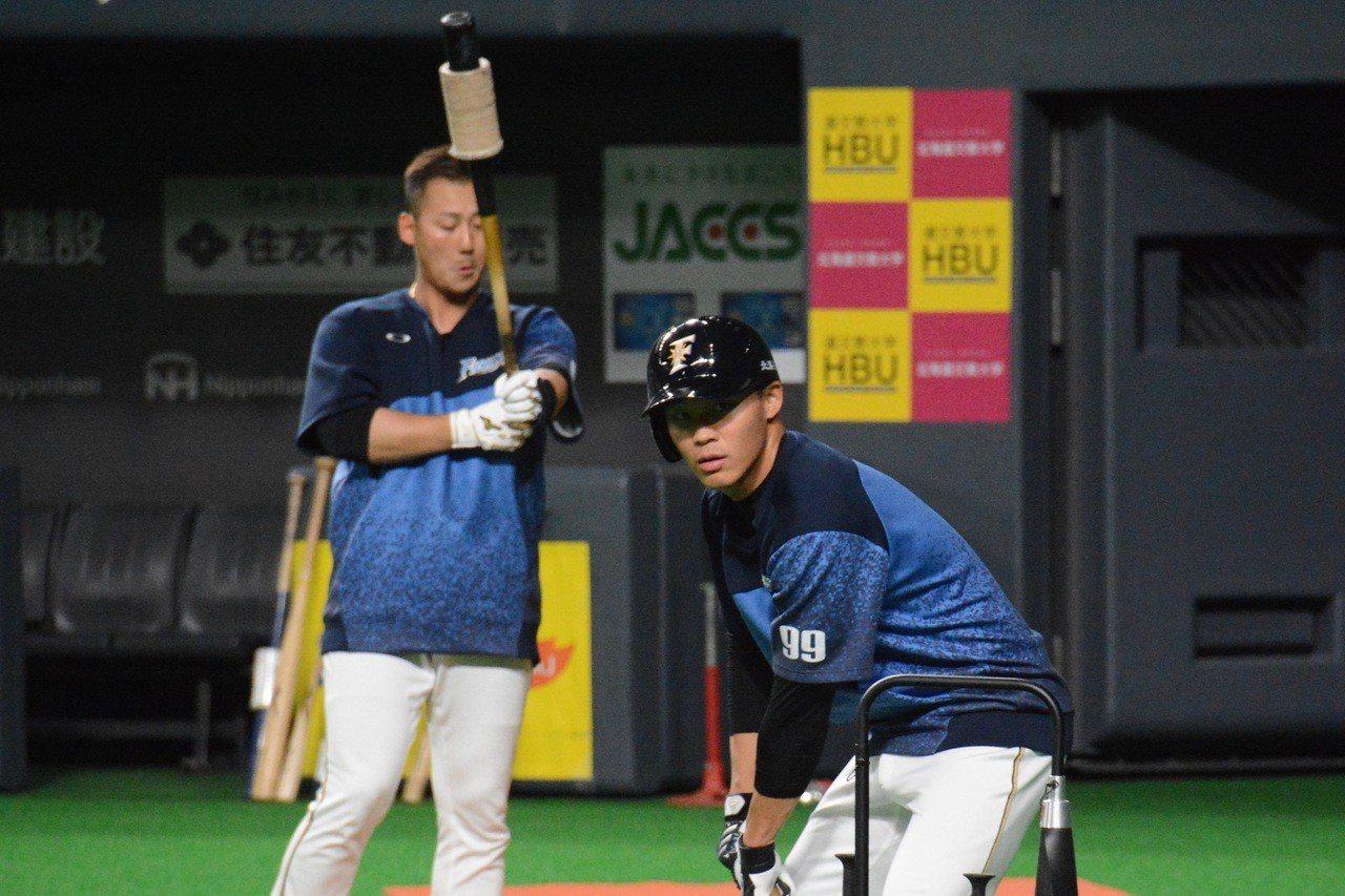火腿隊四棒中田翔(左)認為,有王柏融(右)在五棒很放心。 特派記者蘇志畬/攝影