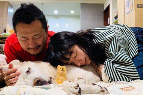 知名作家九把刀養了近15年的愛犬「阿魯」在3月31日晚間10點02分離世。阿魯去年被確診惡性T細胞型的淋巴腫瘤,雖然九把刀已經整理好愛犬隨時會「下班」離開的心情,但他仍在臉書難掩思念,用文字真情流露...