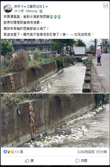 網友張貼美濃水溝遭人丟棄大量芭樂照片。圖/翻攝爆料公社