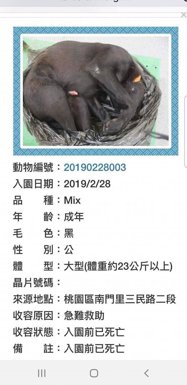 動保團體指控桃園朝陽公園的毛小孩「小小黑」遭不當安樂死,要桃園市動保處給的交代。...