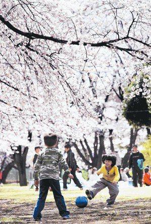 台灣人有多愛去日本?去年赴日旅遊高達483萬人次。 圖/聯合報系資料照片
