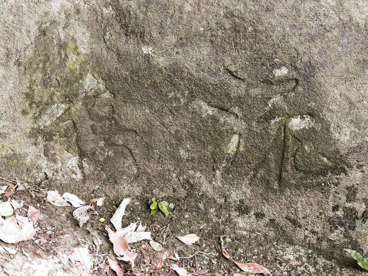 故宮前副院長莊嚴早年因發現這塊刻有「流觴」兩字的石頭,重現「曲水流觴」。 圖/練...
