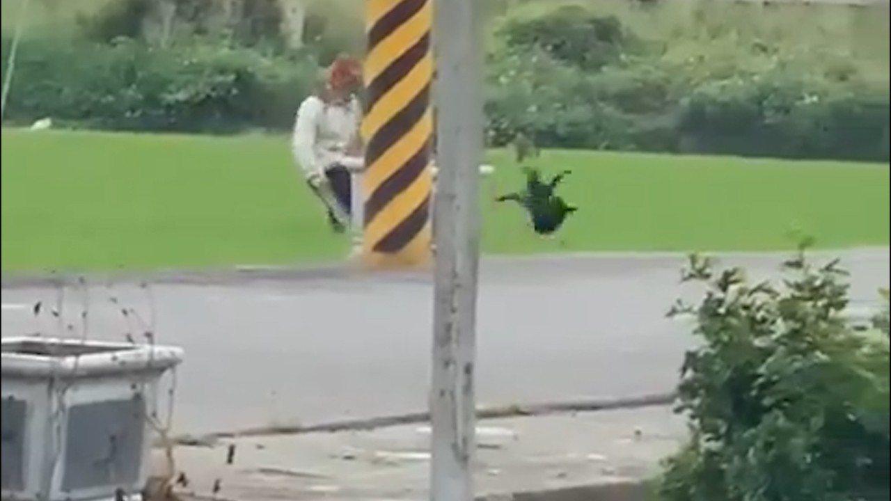 台灣動物緊急救援小組今天(3日)凌晨接獲有人轉寄影片投訴,疑似一名稻田主人為驅趕...