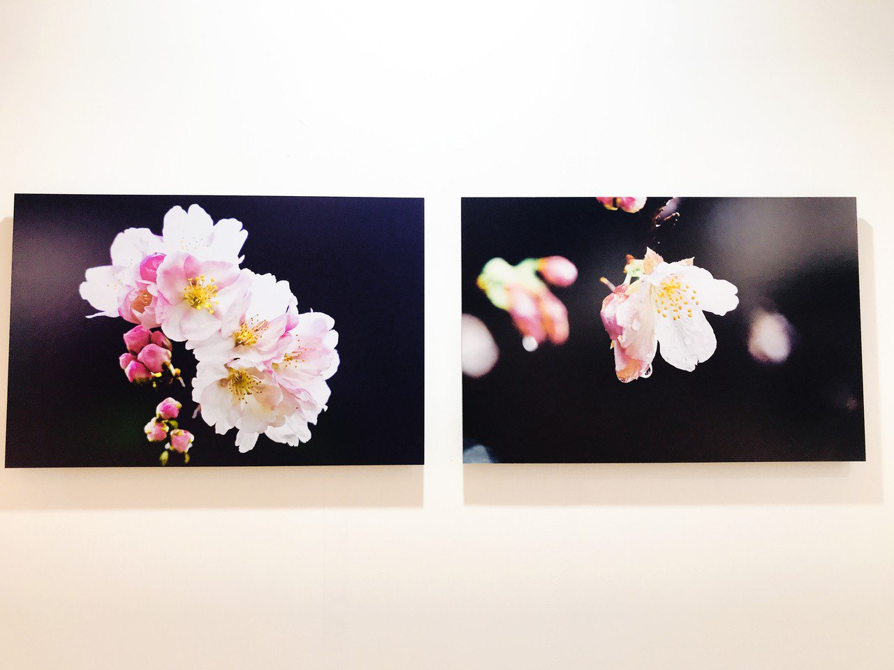 「時序.影像」吳東興攝影展作品。記者江佩君/攝影