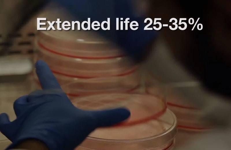 研究人員在老鼠身上試驗時發現,這種藥能延長老鼠36%壽命,相等於人類30年,還能...