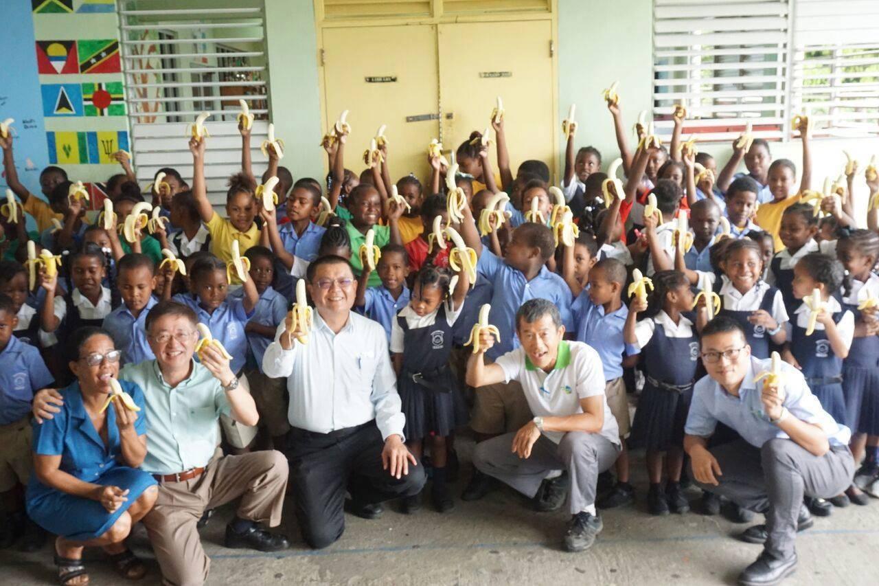 國合會在聖文森執行香蕉復育計畫,最近香蕉豐收,技術團特別送了12箱到偏鄉學校和當...