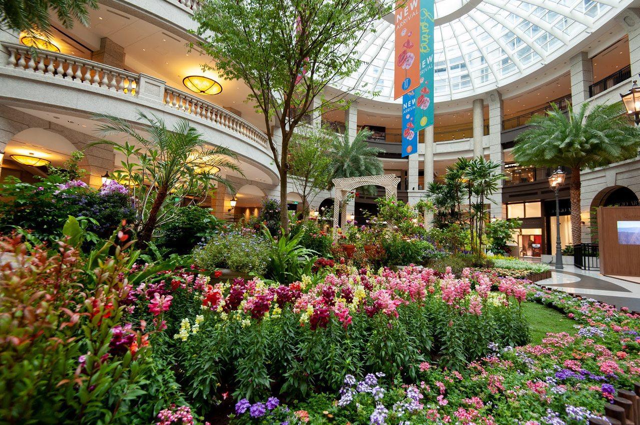 BELLAVITA寶麗廣塲,中庭廣場變身繽紛浪漫花園。圖/BELLAVITA提供