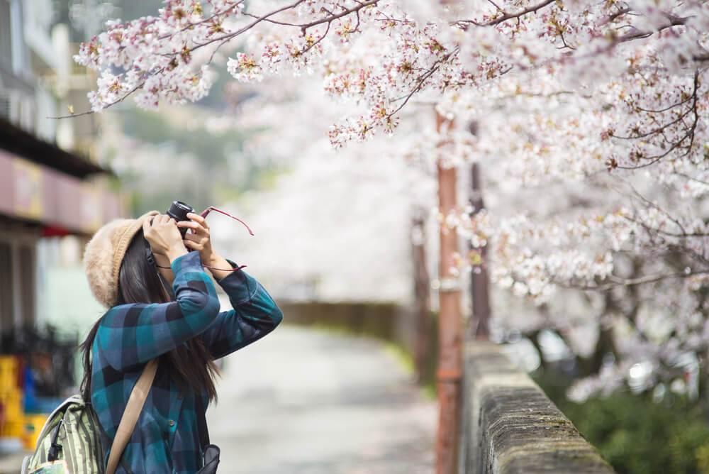 台灣之星迎春假、海外櫻花季,推出多種上網優惠,線上自助輕鬆預約,便利又省事。圖/...