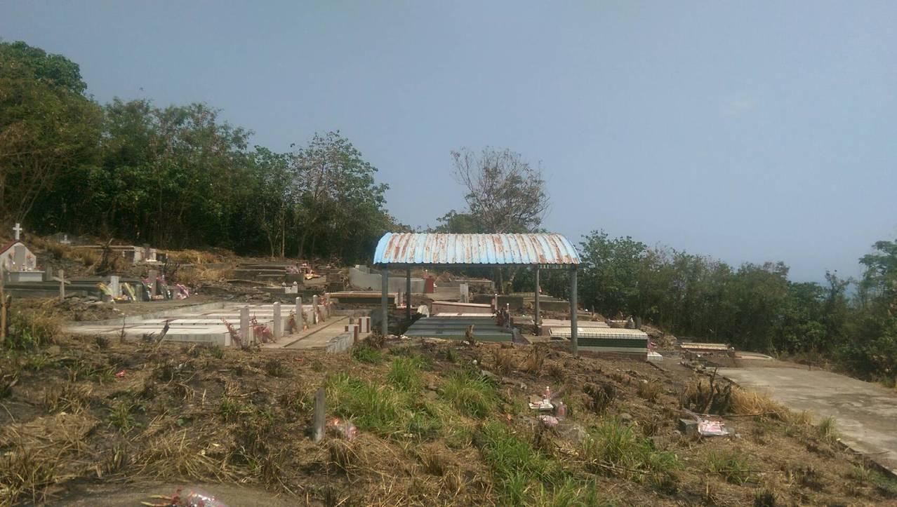 台東大武鄉一處山區墓園,遭猴群大舉入侵墓園盜食祭品。記者尤聰光/攝影