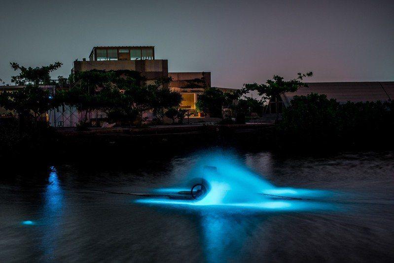 圖/彌陀藍眼淚,在魚塭中散發神秘藍光。網友jingwei0824授權