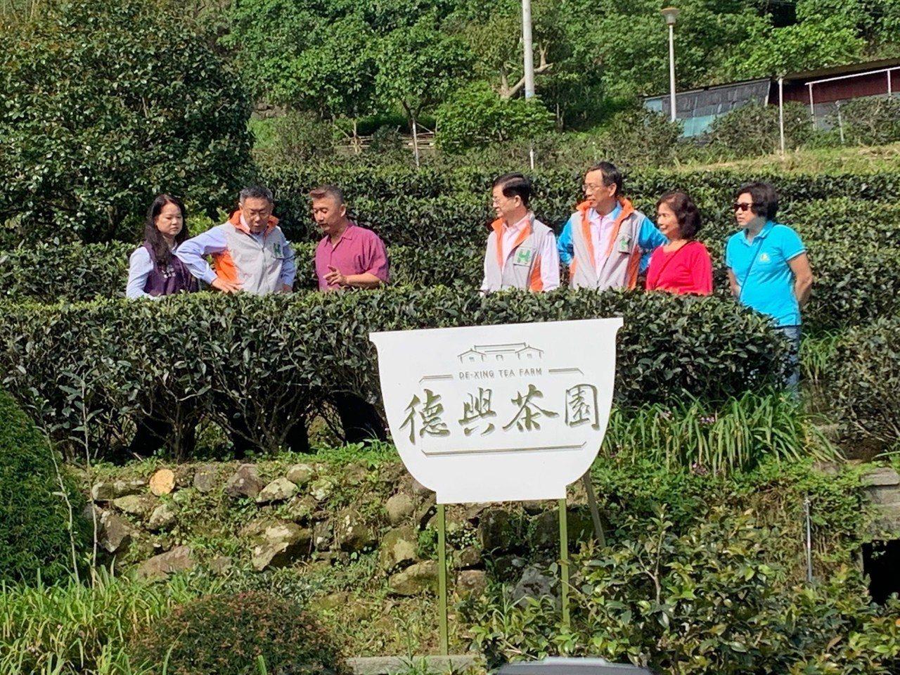 台北市長柯文哲上午到貓空復興茶園,參加一日醫師活動。記者楊正海/攝影