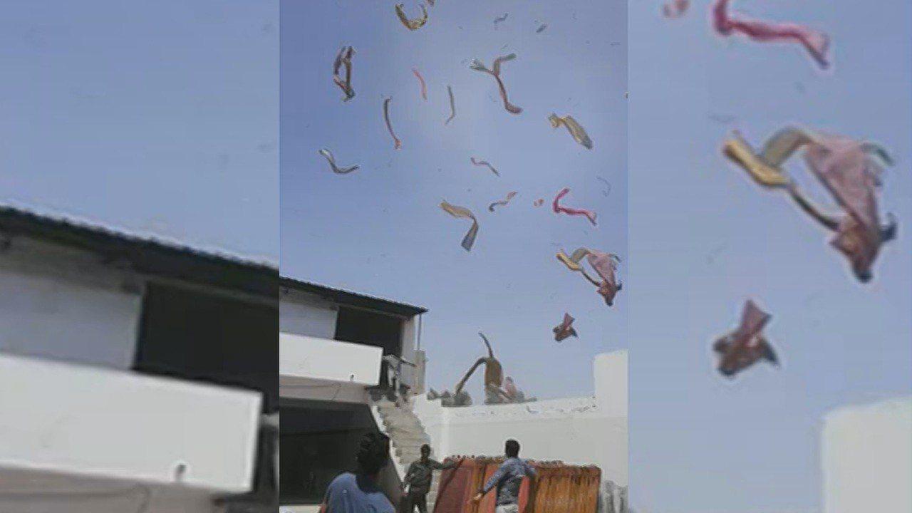 印度古加拉特邦傑特普爾市(Jetpur, Gujarat)4日出現奇特景象,數百...