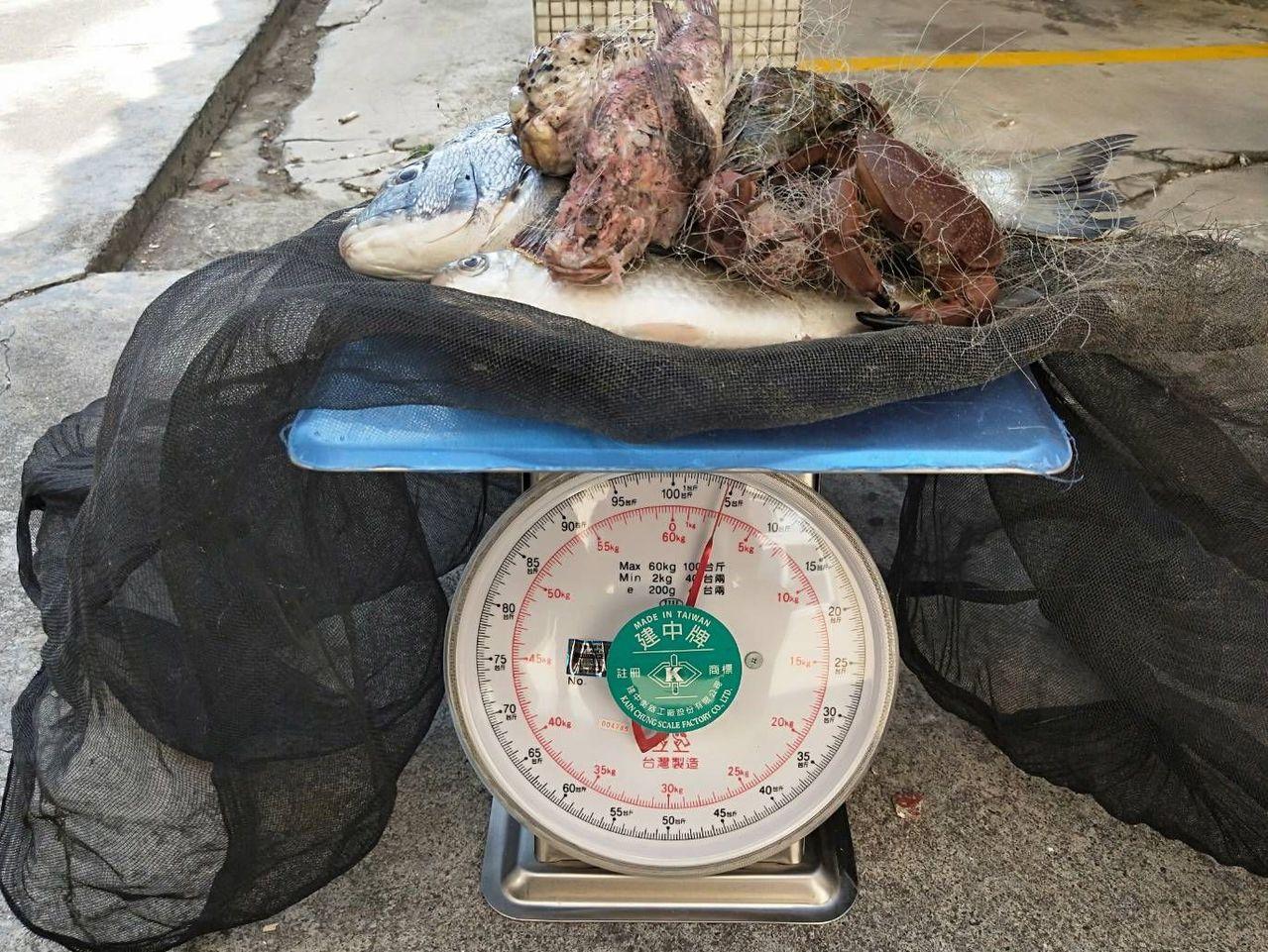 薛姓男子的漁獲不到3公斤,但要胭 此吃官司。記者林保光/翻攝