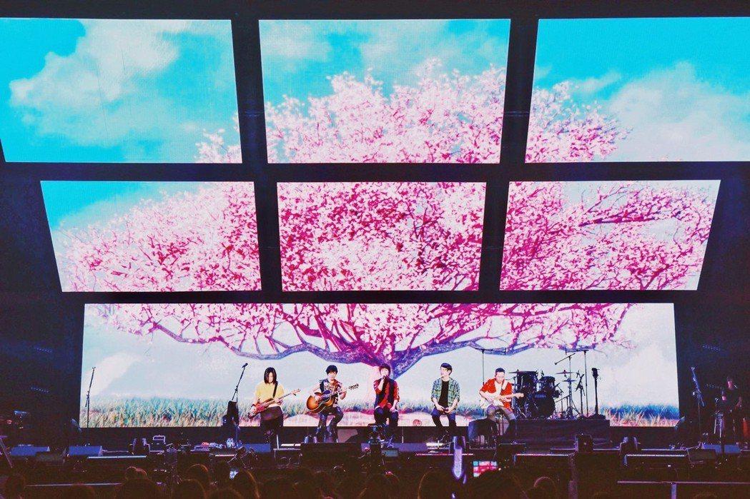 五月天陪著歌迷一起賞櫻。圖/信音樂提供