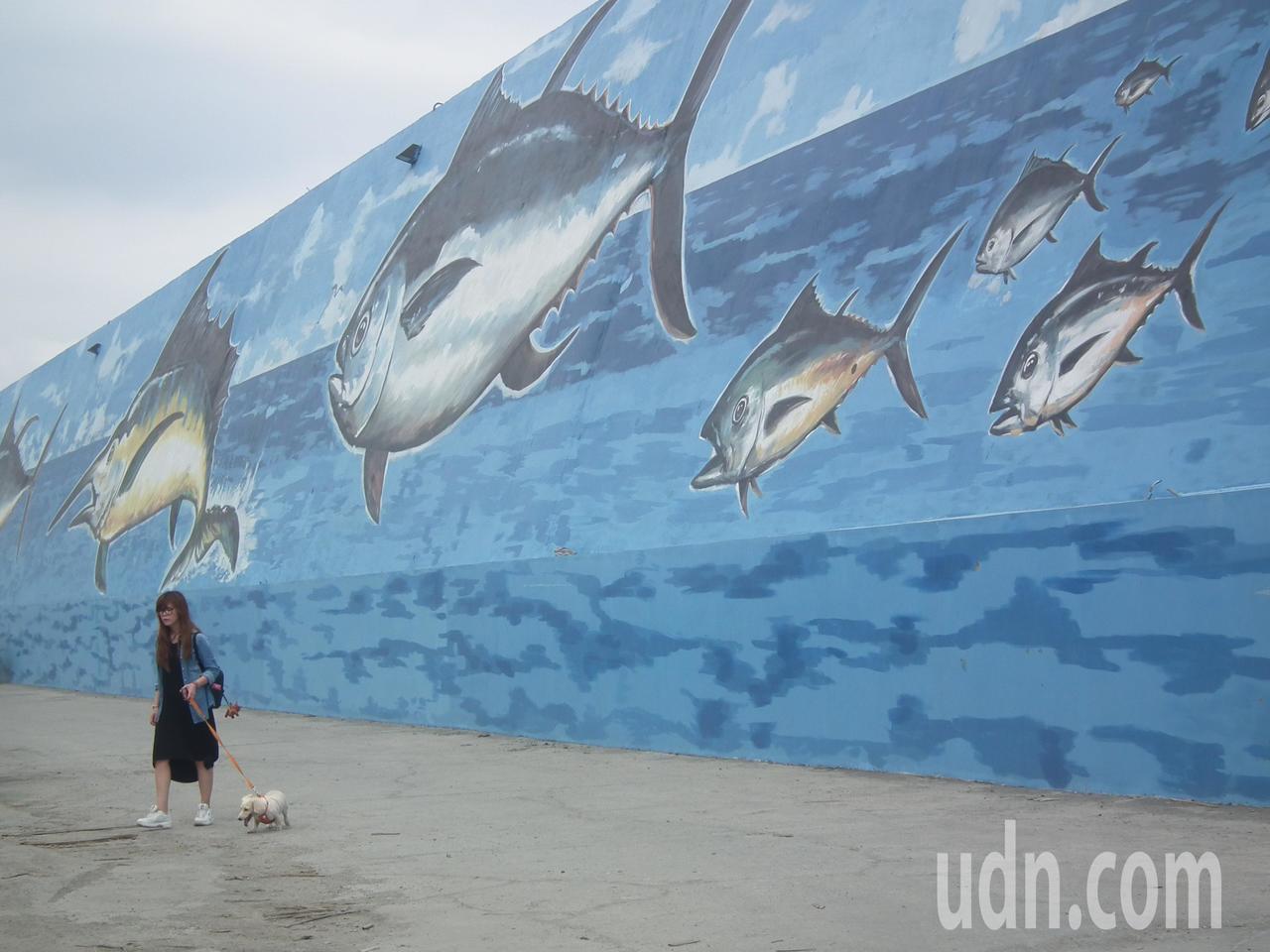 台東富岡漁港防坡堤重新彩繪的牆面讓人眼睛為之一亮,也改善了富岡漁港觀光門面。記者...